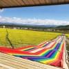 四季七色彩虹滑道 让你旱地滑雪不是梦 四季网红旱雪滑道