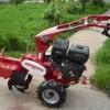 开沟机大葱培土机价格小型开沟培土机价格立盈开沟培土机价格