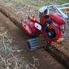 微型培土机小型培土机价格及图片小型开沟培土机电动培土机